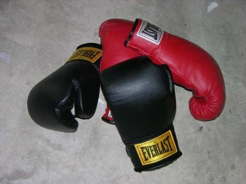 Floyd Mayweather Jr vs. Canelo Alvarez