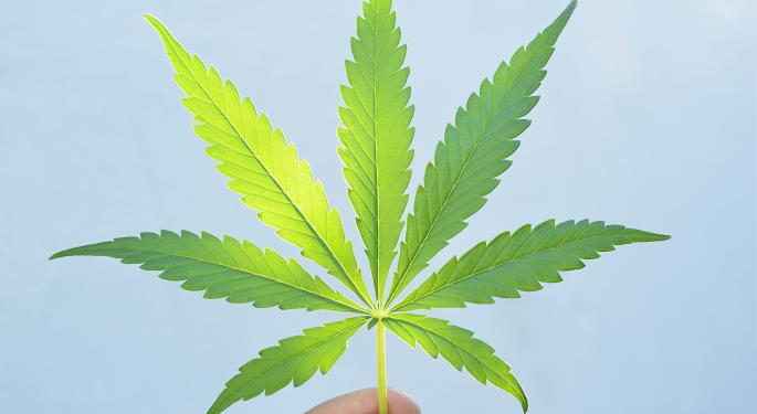 Remaining Vigilant Is Key For Marijuana Investors