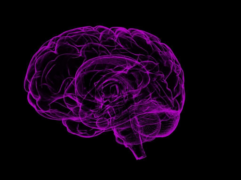 Biogen Stock Crashes on Termination of Alzheimer's Studies