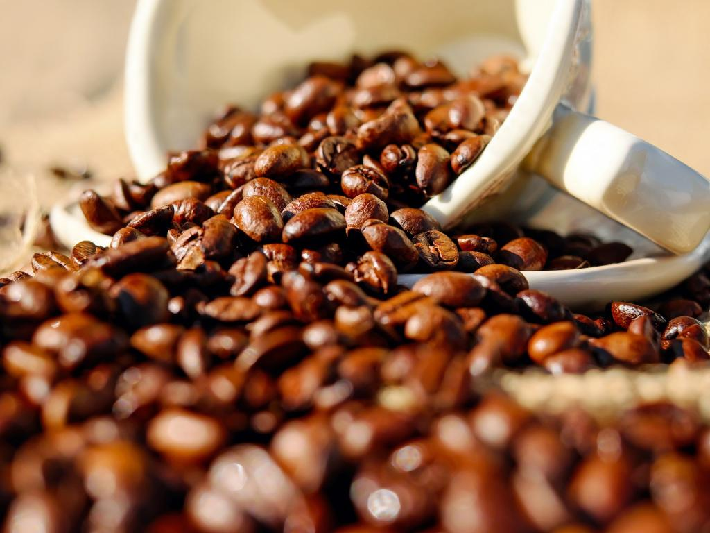 China's Luckin Coffee slumps on 'fake' data news