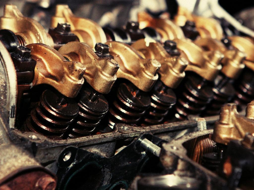 Advance Auto Parts' (AAP)