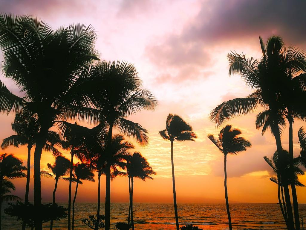 Deutsche Bank Cuts Rating On Hawaiian Holdings, Inc. (HA) To