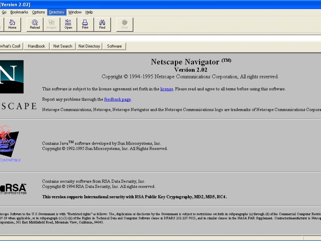 What is netscape ipo