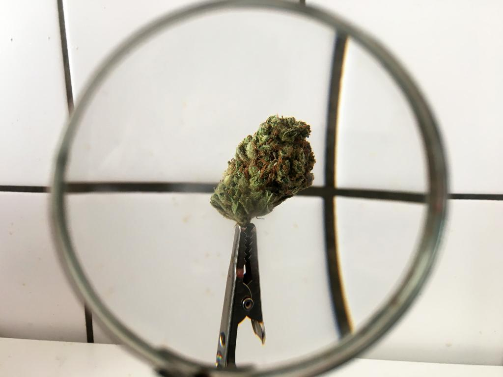 The Week In Cannabis: SAFE(er) Banking, New Jersey, Seth