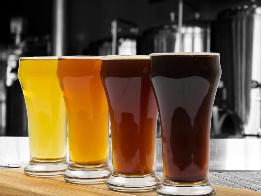 Craft Beer Ratings