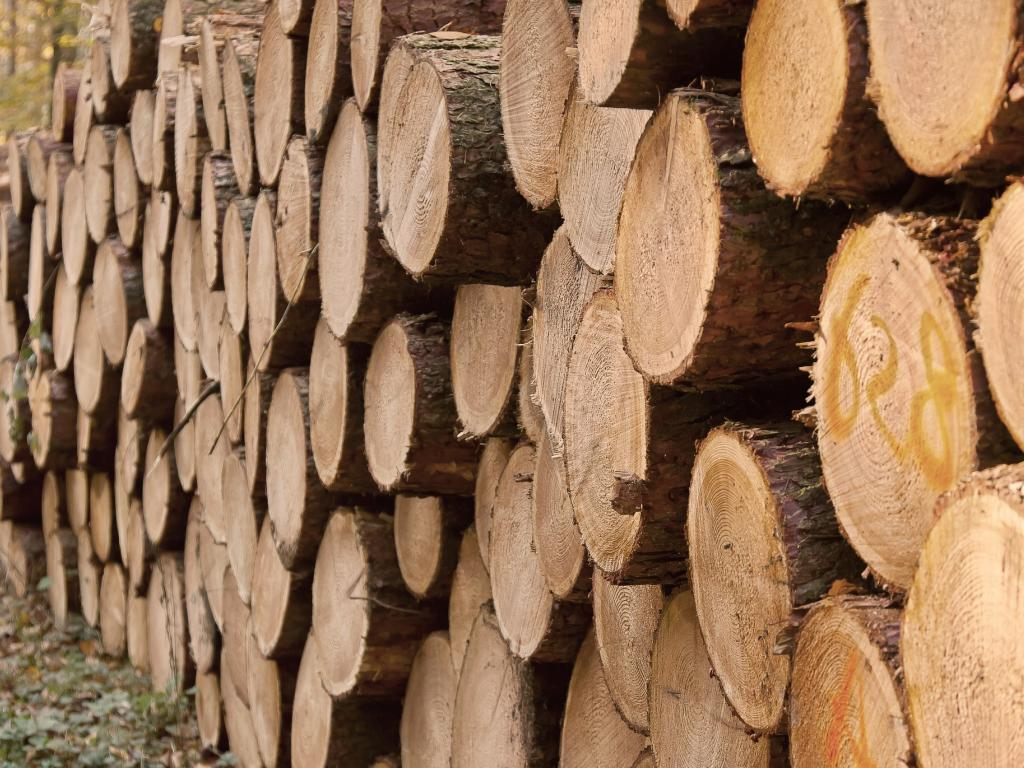 Weyerhaeuser Company (NYSE:WY) - With Lumber Prices At A 15-Month