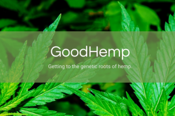 Arcadia Bio Launches Hemp Seeds Brand: 'Just The Beginning Of Our Ambitions'