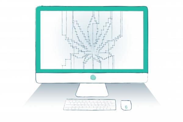 How Accela Keeps Cannabis Commerce Going Amid COVID-19 Crisis