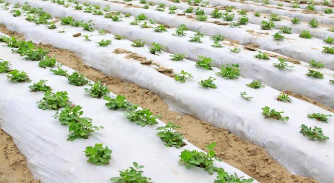 Forecast Report - Global Agricultural Films Market 2020