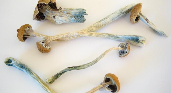 Denver Votes To Decriminalize 'Magic Mushrooms'