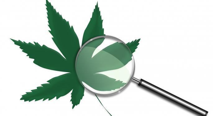 The Importance Of Vetting Marijuana Companies