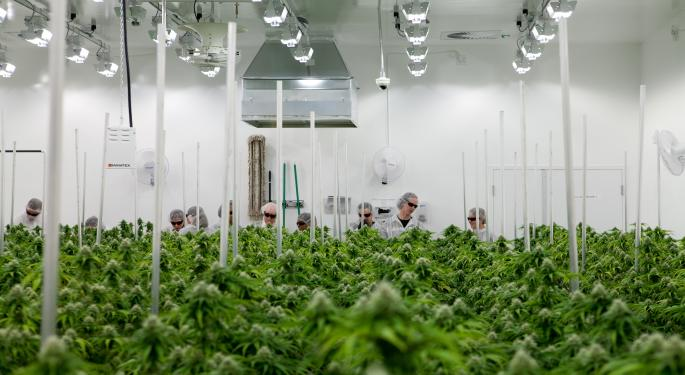 MKM Lowers Aurora Price Target On Softening Cannabis Industry Forecast