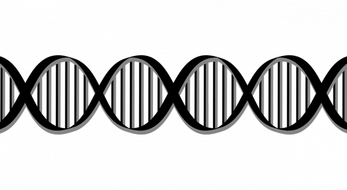 Applied DNA Stock Plunges After Share Offering Announcement