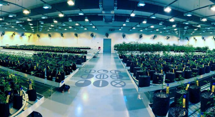 C3 Industries Completes 7,000-Plant Michigan Cannabis Cultivation Facility