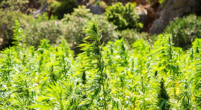 AndCan Index Up In October: US Demand For Legal Cannabis Rising