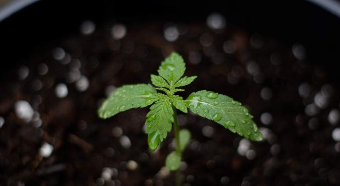 Cannabis Company iAnthus Receives New Jersey Cultivation Permit