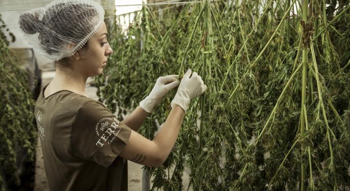 Aphria Launches Plant Positivity Winter Garden To Help Fight The Winter Blues