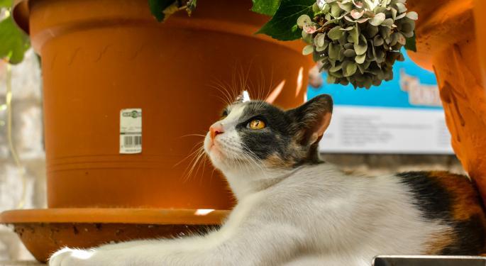 KeyBanc Upgrades Underappreciated Central Garden And Pet Co.