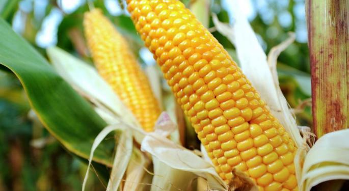 Grain Expert: Monsanto's Acquisition Of Syngenta Would 'Make Sense' For Shareholders, Not Necessarily For Customers