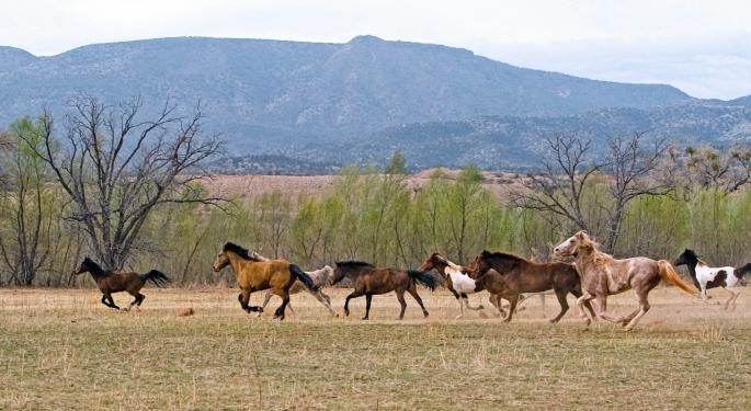 If Natural Gas Prices Rise, Expect Wildhorse Resource Development Shares To Gallop Higher