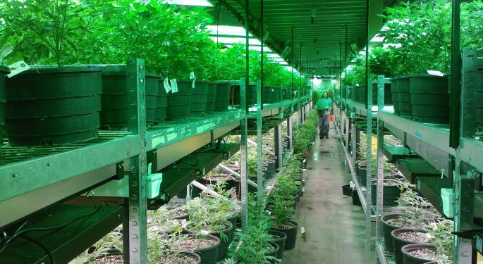 Tilray's High Park Receives Cannabis Processing License