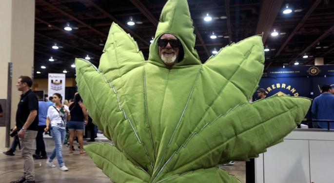 This Weekend, The SECC Expo Brings Cannabis Education To Florida