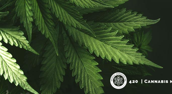 Top 10 New Studies On The Effects of Marijuana