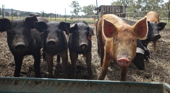 Hormel: African Swine Fever In China Impacted Hog, Pork Markets