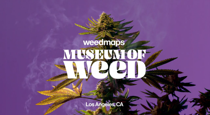 A Weed Museum Is Coming To Hollywood