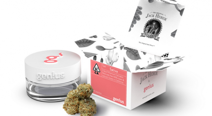 Exclusive: gen!us Cannabis Brand Launches The Original Jack Herer Strain For Brains
