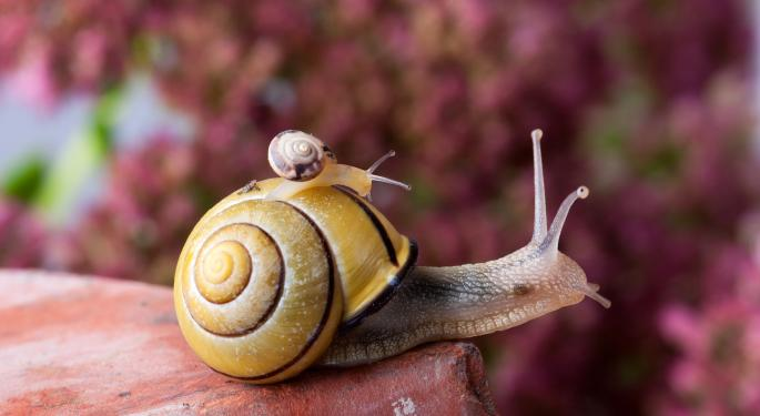 Barron's Recap: The Snail Economy