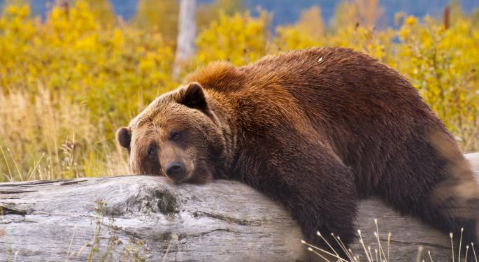 To Bears' Dismay, November Looks Like a Winner; 2014 Could Be OK