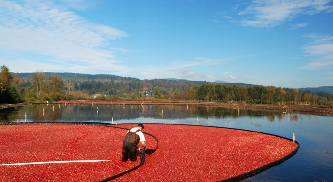 Retaliatory Tariffs Sour US Cranberry Market