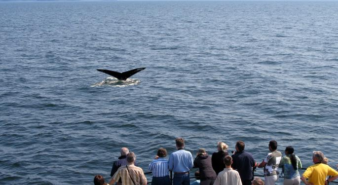 SLIDESHOW: Whale Watchers Pile In As Hedge Funds File 13Fs; Many Funds Showing QoQ Declines