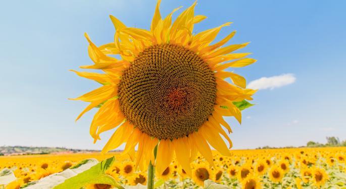 Super-Prime Lending A 'Ray Of Sunshine' For SunTrust