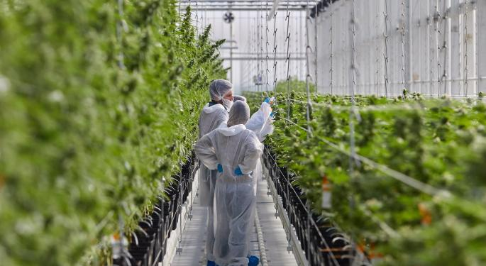 Tilray Boosts Export Capability With EU Manufacturing License, GMP Certification