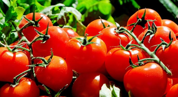 Tomato Importers Worry New Rules At Mexican Border To Cause Delays And Higher Prices