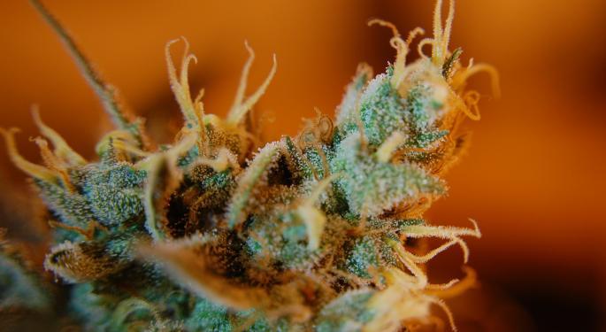 Cramer Talks 'Unrealistic Expectations' Among Cannabis Investors