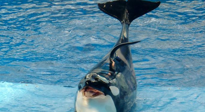 3 Reasons To Like SeaWorld's Stock